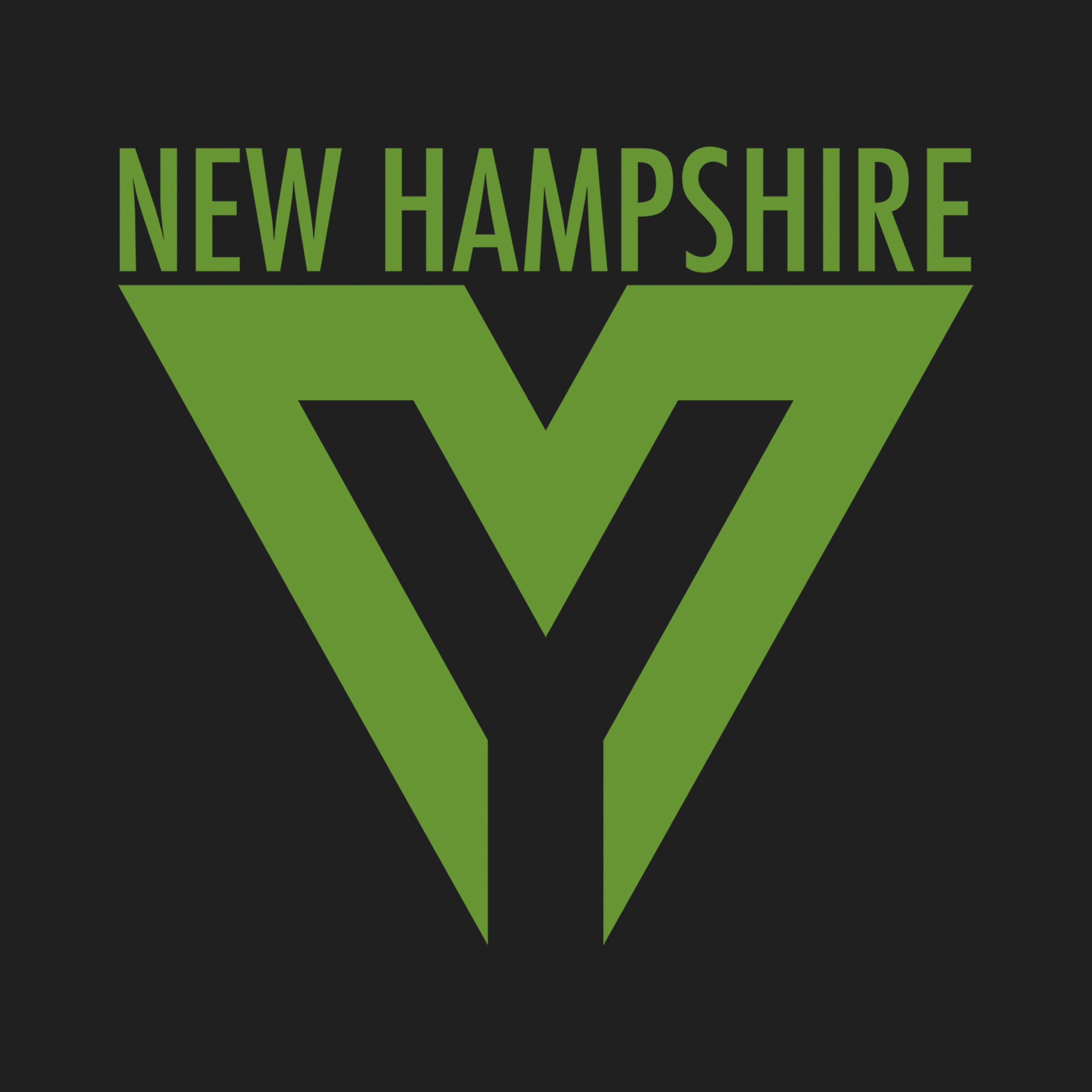 New Hampshire Youth Movement